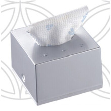 Silver Squre Decorative Fancy Public Car Wholesale Wall Mounted Plastic Facial Tissue Paper Box Holder