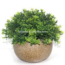 2017 Planta artificial planta primitiva decoração contemporânea