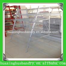 L'élevage de caille au Henan Huaxing