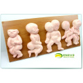 VERKAUFEN Sie 12452 Demonstrator Deformities in Kleinkinder, 8 Stück in einer Serie, Anatomie Modelle> Fetal Malformation Model