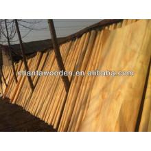 PLB plywood veneer/pine veneer