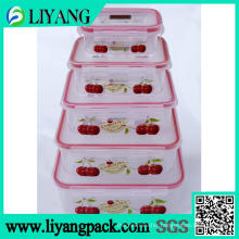 Sample Apple Design, Heat Transfer Film for Lunch Box