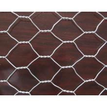 High Quality Hexagonal Netting/Chicken Mesh