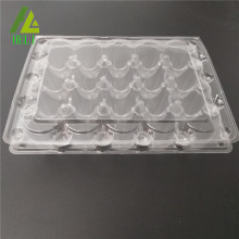 20 holes quail eggs tray