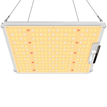 Panel de luz de cultivo de 200W para Amazon Ebay
