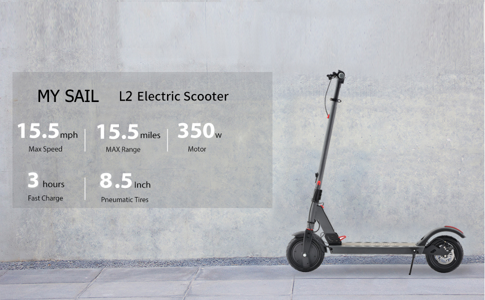 Special Electric Scooter