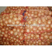 frische gelbe Zwiebel 4-7cm