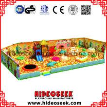 Piscina enorme con equipo de juegos infantiles para interior