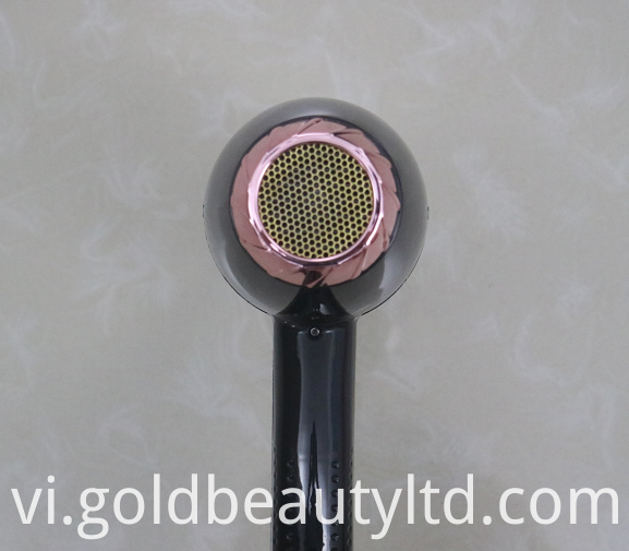 Professional Ionic Hair Dryer