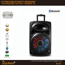 12′′ Multimedia DJ Outdoor Wireless Karaoke Trolley Bluetooth Active Speaker