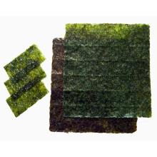 papel de algas orgânicas
