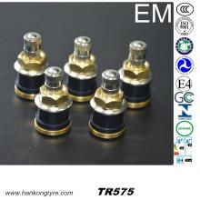 Tubeless Typ LKW und Bus Reifenventil (TR575, TR500, TR501, TR570)
