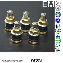Tubeless Type Truck and Bus Tire Valve (TR575, TR500, TR501, TR570)