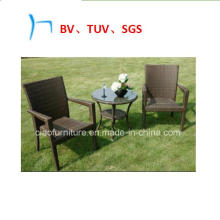 Meubles de jardin Meubles en osier Loisirs Chaises de café (8030)