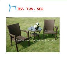 Garden Furniture Wicker Furniture Leisure Coffee Chairs (8030)