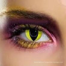 Gato amarelo olhos coloridos Cosplay louco lente de contato