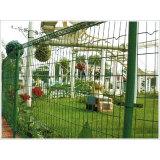 frame fence netting