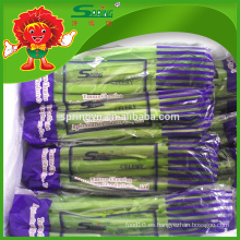 2015 Hortalizas orgánicas chinas Nuevo apio fresco