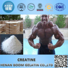 Top quality favorable price creatine weight gain ISO standard