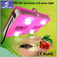 Hot Sell Square Full Spectrum LED wachsen Licht