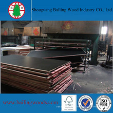 China Film Faced Shuttering Plywood for Construction Materials