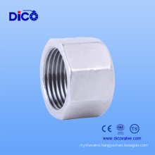 Stainless Steel Hex Cap with Pipe Fitting