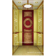 Vvvf titânio espelho de ouro Home Elevator