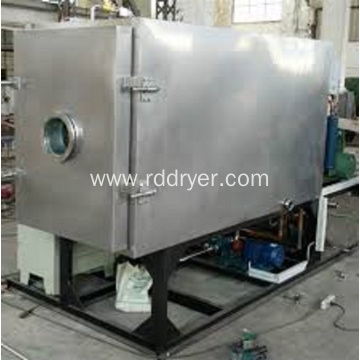 Continuous fruit vacuum freeze dryer