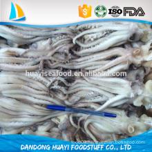 hot sale frozen bqf best quality squid head cheap price