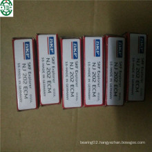 for Motor Spindle Lifting Nj202ecm SKF Cylindrical Roller Bearing