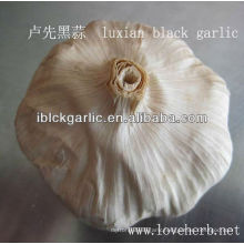 Black garlic the best choice for 2013
