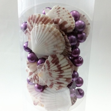 Wholesale Seashell Craft for Home Decoration