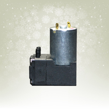 electronic vacuum pumps