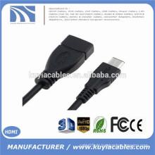 10CM USB 3.0 AF nach USB-C 3.1 Typ C Stecker OTG Datenkabel Stecker Adapter für Macbook Nokia N1 Festplatte