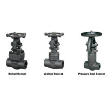 GB Standard Forged Steel Gate Valve