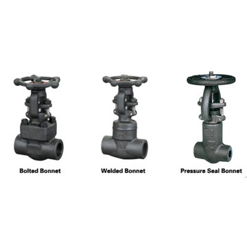 Lbs A105 Forged Steel Gate Valve