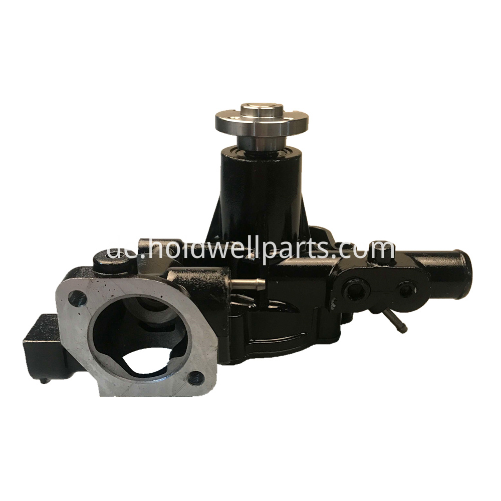 Holdwell Water Pump Am882090