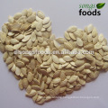Pumpkin Seeds & Kernels from a Top 100 Companies in Agriculture