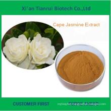 Supply Cape Jasmine Fruit Extract