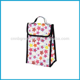 600D cooler lunch bag
