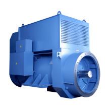 Generador industrial sin escobillas 60HZ AVR Entrada Salida