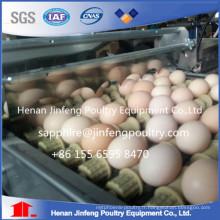 Cage de pose d'oeufs de poulet de treillis métallique Q235