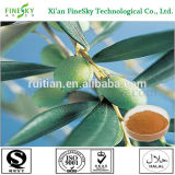 hot sell olive leaf extract powder with hydroxytyrosol