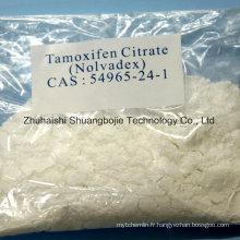 Citrate de tamoxifène en poudre anti strogène anti-œstrogène pour le traitement du cancer des os