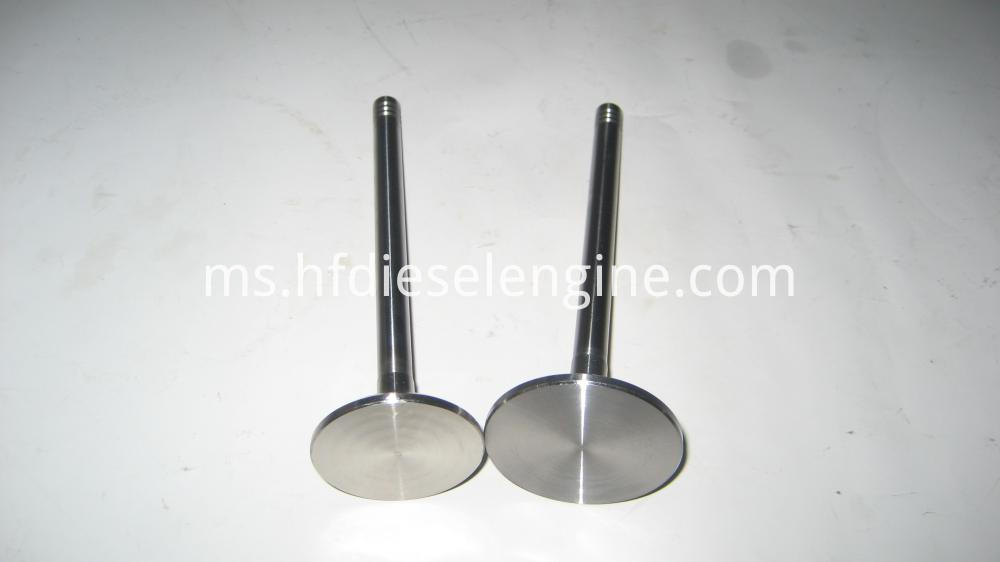 1013 Intake and Exhaust Valves (4)