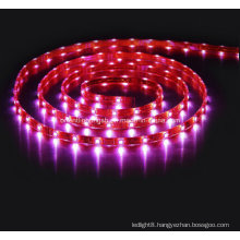 SMD 5060 High Power Flexible Strip-30 LEDs/M IP68