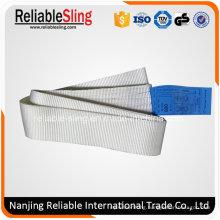 Ce Certified 800kg Polyester Endless Webbing Sling