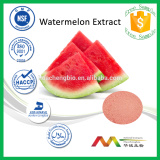NSF-GMP Professional Manufacturer Water Soluble Watermelon Fruit Extract