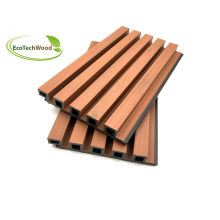 2021 Hot Sales Co-Extrusion Great Wall WPC Wall Cladding