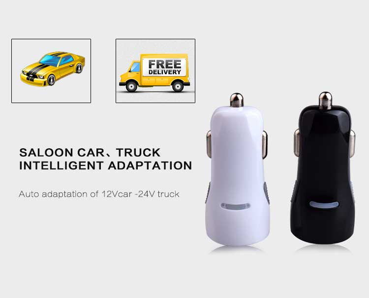 dual port usb car charger (1)